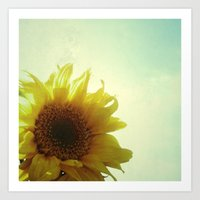sunflower Art Prints featuring Sunflower by Cassia Beck
