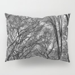 Central Black Pillow Sham