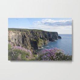 Sea Pink On The Cliffs Metal Print