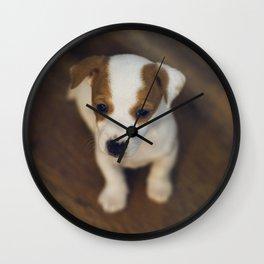 Little puppy dog Wall Clock