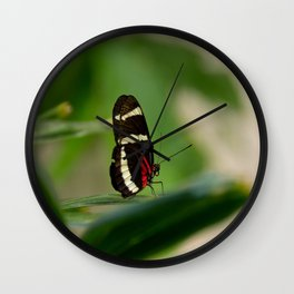 Doris Longwing Butterfly-1 Wall Clock