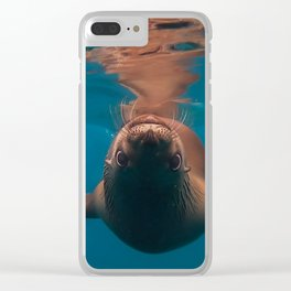 Under the Sea of Cortez: Playing with Baby Sea Lions Clear iPhone Case