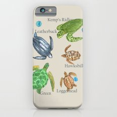 Sea Turtle Types iPhone 6s Slim Case