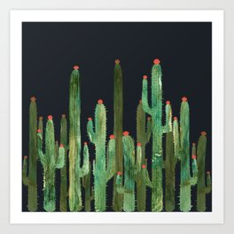 Catus 4 at Night Art Print