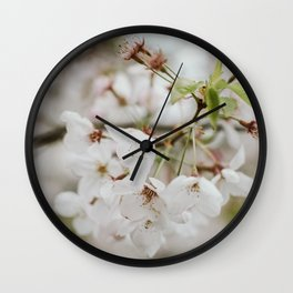 Japanese Cherry Flower Printable Wall Art   Floral Plant Botanical Nature Outdoors Macro Photography Print Wall Clock