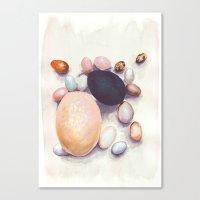 eggs Canvas Prints featuring Eggs by Bridget Davidson