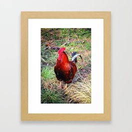 Cheeky Chappy Framed Art Print