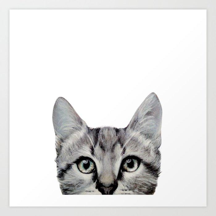 Cat, American Short hair, illustration original painting print Art Print