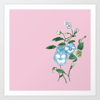 decal Art Prints featuring Pansy Decal Pink, Bluebell and Green  by ThistleandFox
