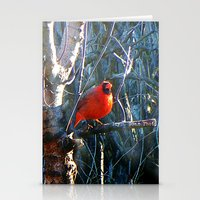 cardinal Stationery Cards featuring Cardinal by IcyBC