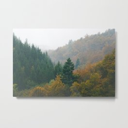Foggy autumn forest layers disappearing in fog Metal Print