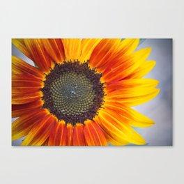 Summer Cheer Canvas Print