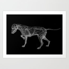 Dog Skeleton Art Print