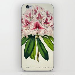 Vintage Botanical Floral Flower Plant Scientific Illustration Duodenum Prince Camille iPhone Skin