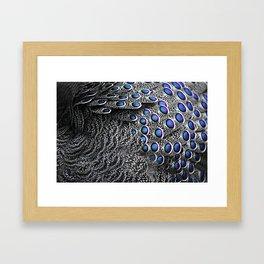 Plumage Framed Art Print
