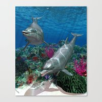 dolphins Canvas Prints featuring Dolphins by Simone Gatterwe