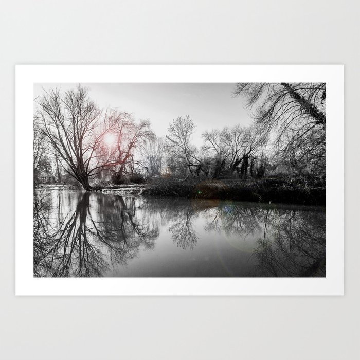 TREE-FLECTION Art Print