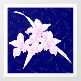Pink and White Orchids, Navy Background Illustration Art Print