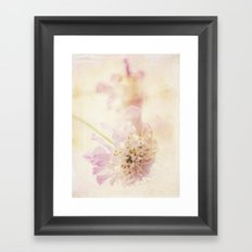 Soft Pink Framed Art Print
