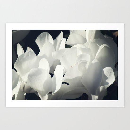 Fleurs du Martin Art Print