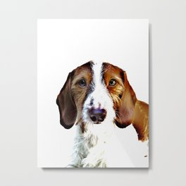 """Birch"" ~ Dachshund, Weiner Dog, Doxie, everywhere!  Metal Print"