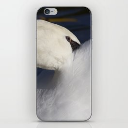 Swan Shyness iPhone Skin
