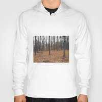indiana Hoodies featuring Indiana Forest by Kurt Rahn