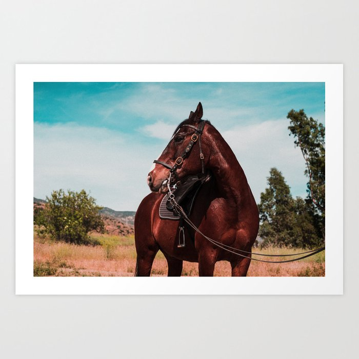 Blaze the horse color Art Print by fascinationjesse | Society6