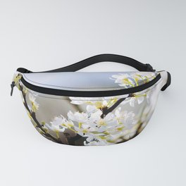 Plum flower, Photo Plum flower, Plum flower hill, beautiful view, Poster print, Canavas Print, Wall Hanging Fanny Pack