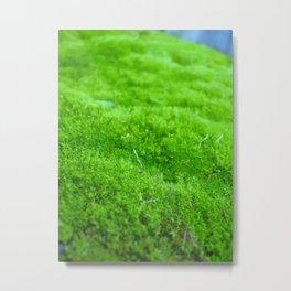 Green Memories Metal Print