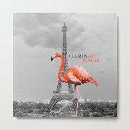 FlaminGo Places Metal Print
