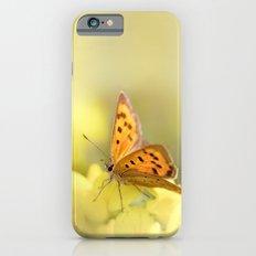 Precious Summer Gold iPhone 6 Slim Case