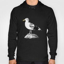 Standard Seagull Hoody