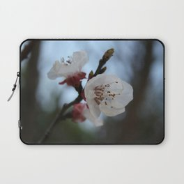 Close Up Apricot Blossom In Pastel Shades Laptop Sleeve