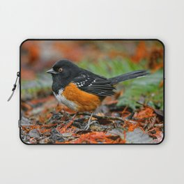 Profile of a Spotted Towhee Laptop Sleeve
