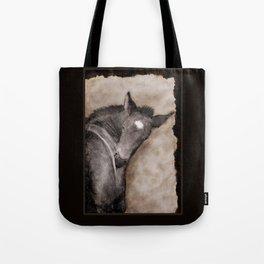 Black Foal Scratching  Tote Bag