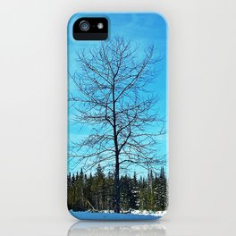 Alone and Leafless iPhone Case