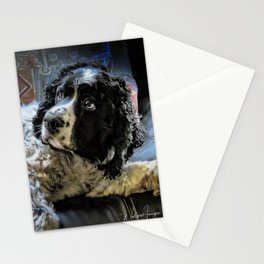 Hunter The Sprocker Stationery Cards