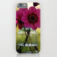 Dahlias In A Blue Jar iPhone 6s Slim Case