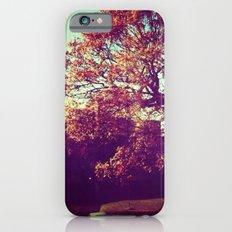 Autumn tree iPhone 6s Slim Case
