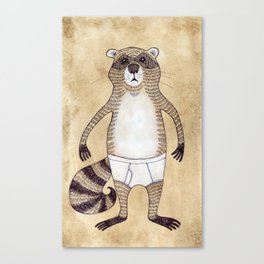 Animals in Underpants - Racoon Canvas Print