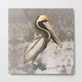 If anyone can, pelican Metal Print