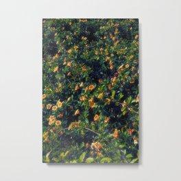 The flower wall Metal Print