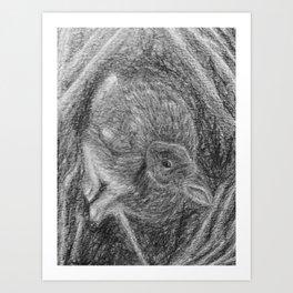 Bunny in Burrow Art Print