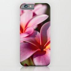 Kaupo Summer Treasure iPhone 6s Slim Case