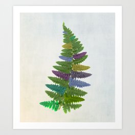 Kaleidofern Art Print