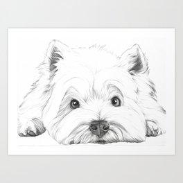West Highland White Terrier, Westie Portrait, Cute dog Art Print