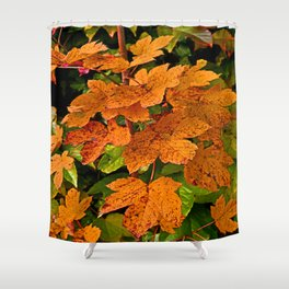 glowing autumn leafs Shower Curtain