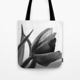 Tulip Blooming In Black And White Tote Bag