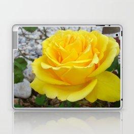 Beautiful Yellow Rose with Natural Garden Background Laptop & iPad Skin